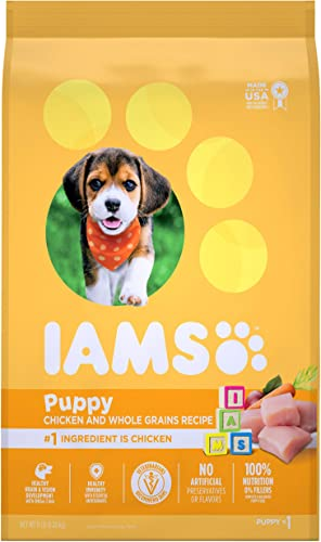 Iams Proactive Health Puppy Dry Dog Food
