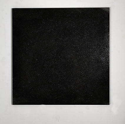 12x12 Absolute Black Granite Kitchen Bathroom Floor Tile Backsplash Patio  T 126