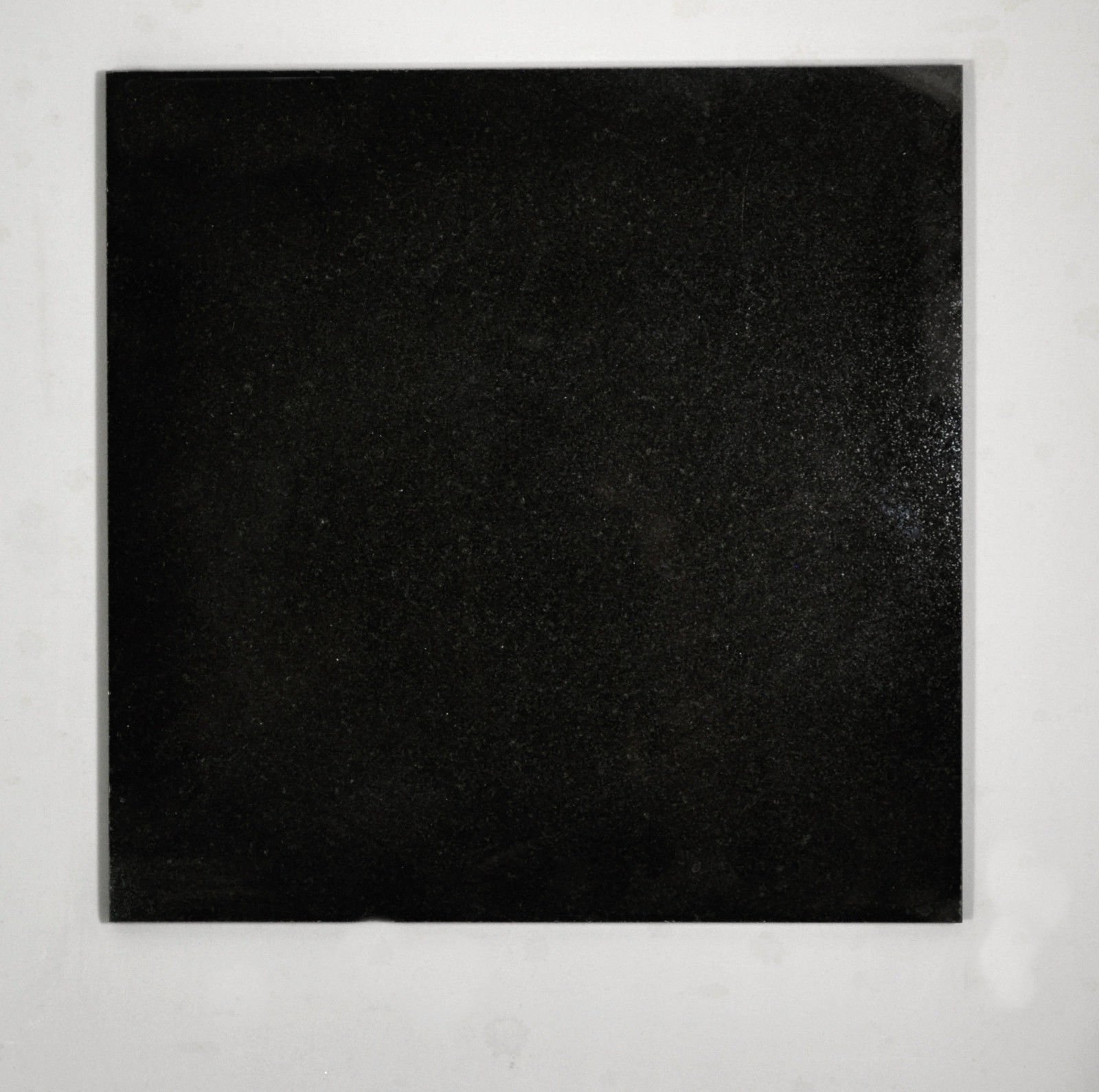12x12 Absolute Black Granite Kitchen Bathroom Floor Tile Backsplash Patio T-126