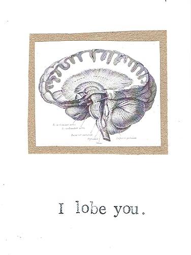 Amazon Com I Lobe You Anatomical Brain Valentine Card Funny