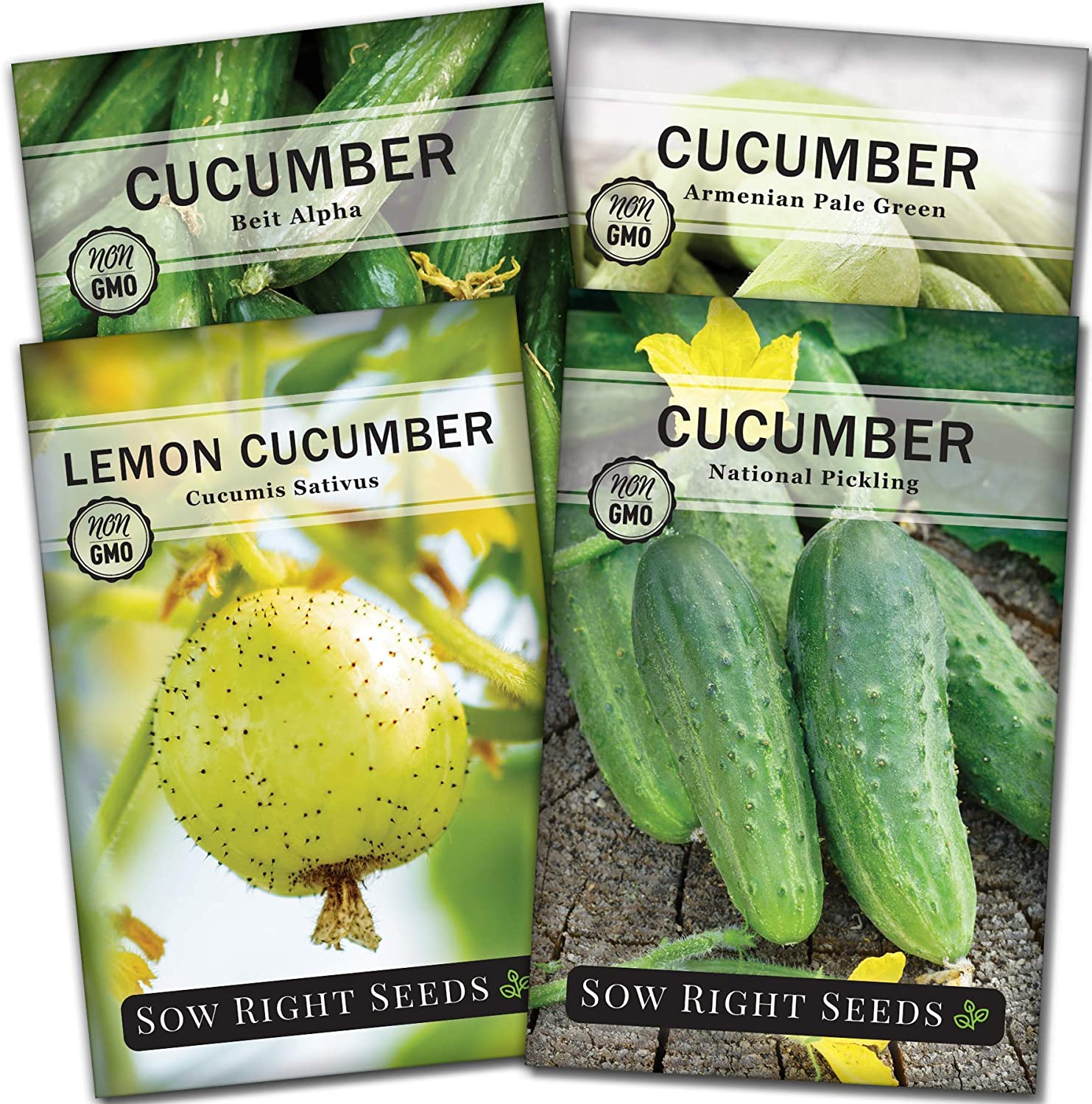 Sow Right Seeds - Cucumber Seed Collection for Planting - Armenian, Pickling, Lemon, Beit Alpha Variety Pack, Non-GMO Heirloom Seeds to Plant and Grow a Home Vegetable Garden, Great Gardening Gift