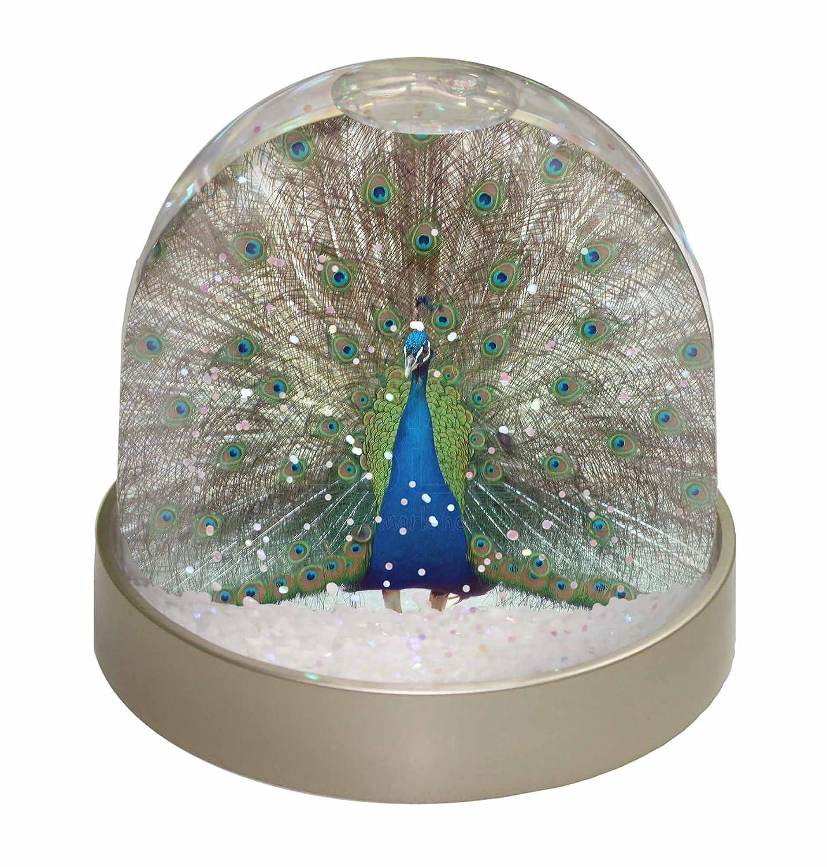 Advanta Rainbow Feathers Peacock Snow Dome Globe Gift, Multi-Colour, 9.2 x 9.2 x 8 cm Advanta Products AB-PE13GL