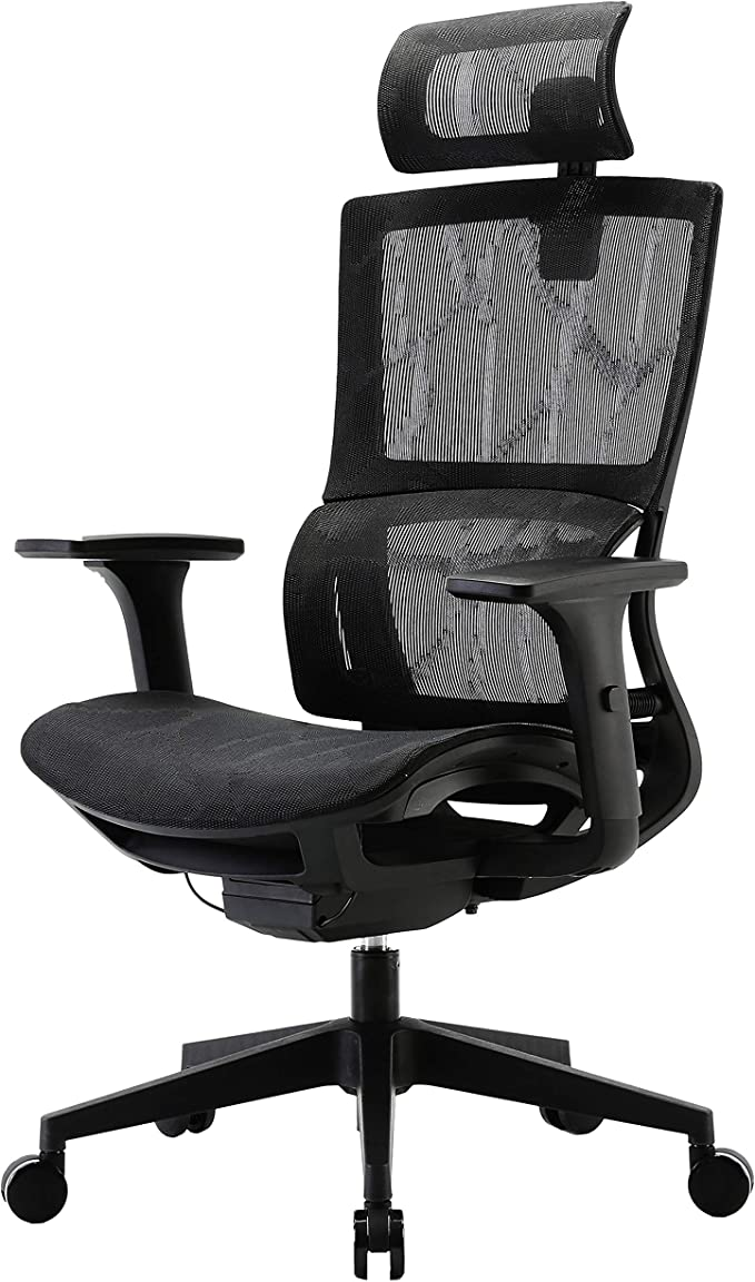 High Back Desk Chair with Headrest for Big and Tall Adjustable Arm Rest and Seat Depth and Backrest Height HESSEN Ergonomic Office Chair with Lumbar Support and Rollerblade Wheel