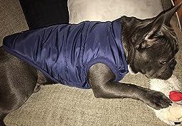Amazon.com : PetBoBo Dog Cat Winter Waterproof Thicken