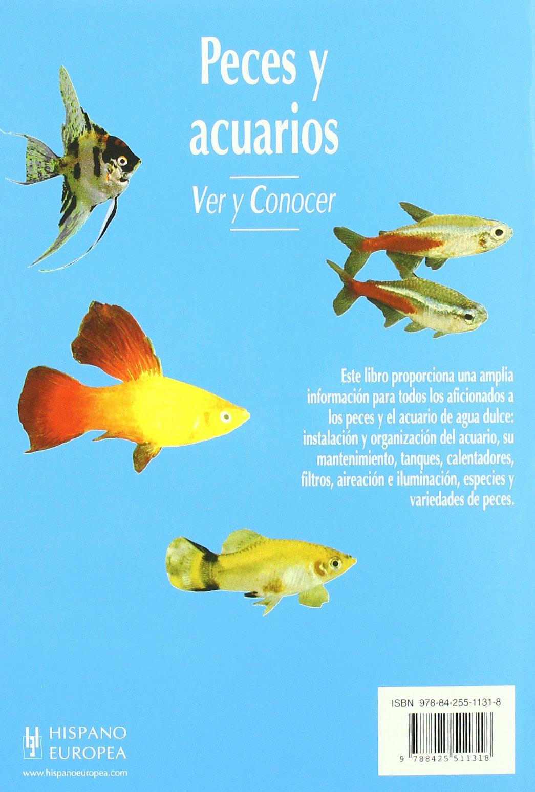 Peces y acuarios/A Basic Book of Aquariums: Ver Y Conocer (Animales de Compania) (Spanish Edition): Herbert R. Axelrod: 9788425511318: Amazon.com: Books