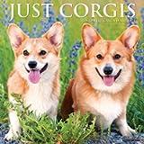 Just Corgis 2021 Wall Calendar (Dog Breed Calendar)