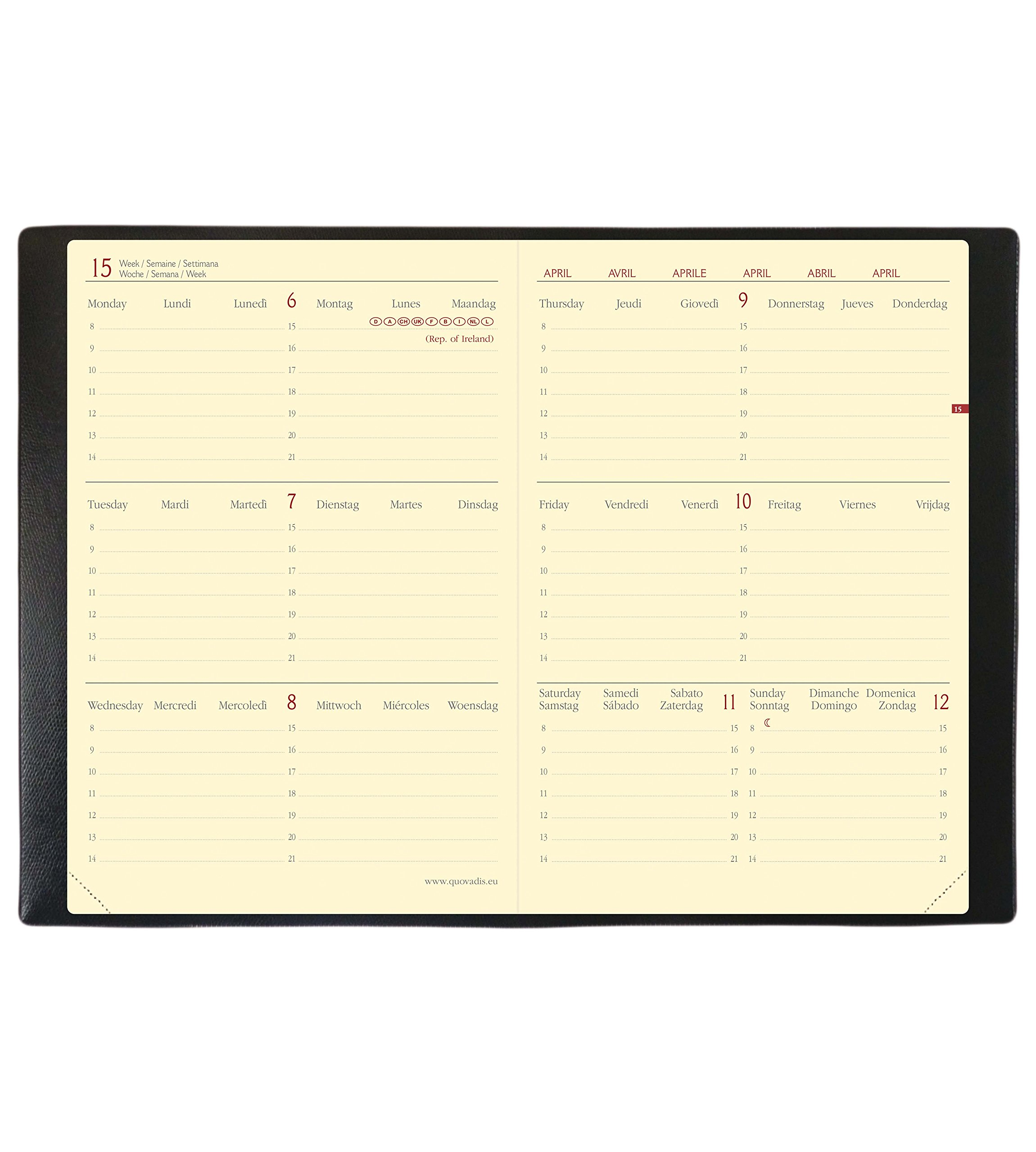 Quo Vadis Horizontal Velvet 15 SD September to December 549008q Academic Diary Year Diary with Elastic 10 x 15 cm 2017-2018 - Velvet Black by Quo Vadis (Image #7)