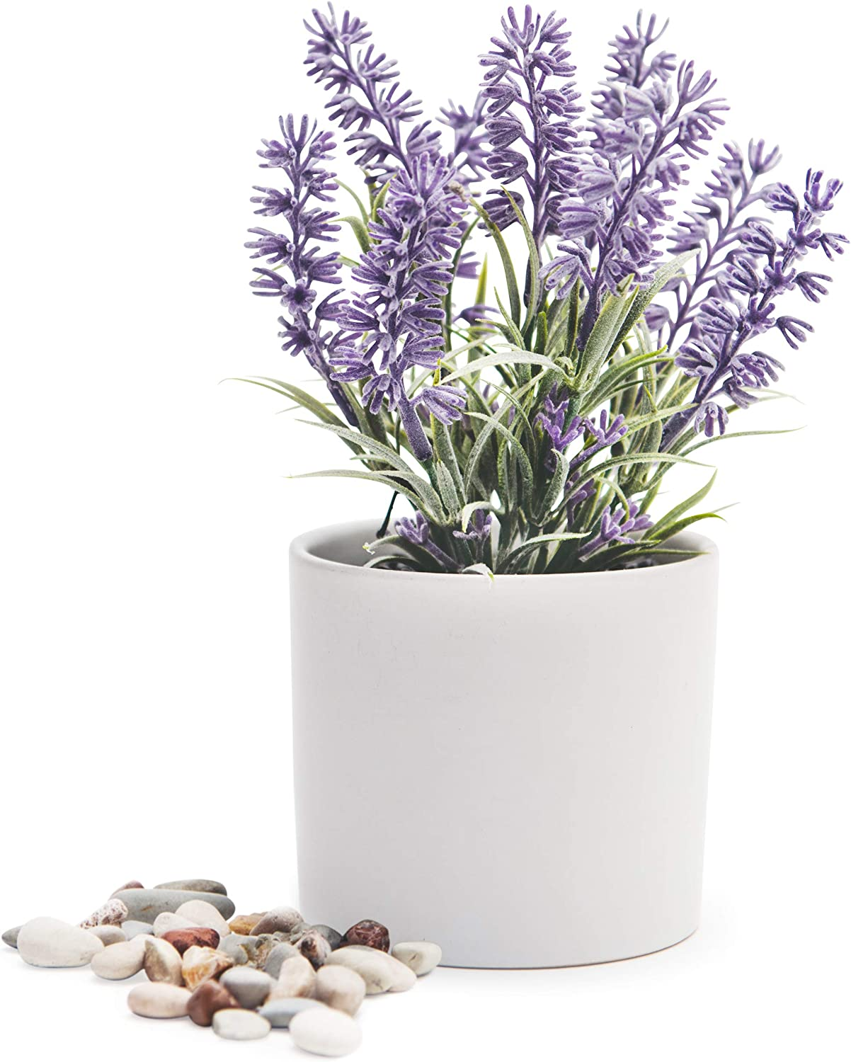 Artificial Lavender in White Pot | Realistic Faux Lavender Plant | Stunning Lavender Decor Pot for Indoor Plant Decor | Quality feaux Lavender Flowers