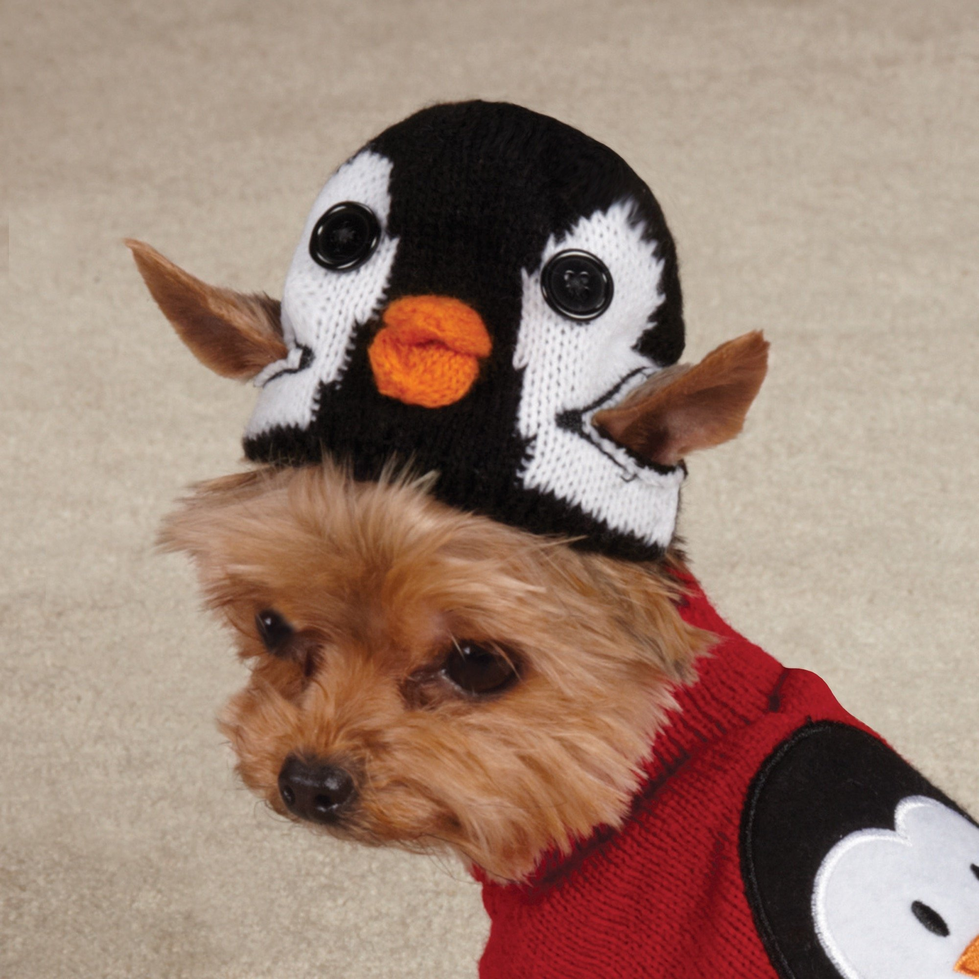 Zack & Zoey Piggy Back Pals Sweater and Hat Set for Dogs, 20'' Large, Penguin