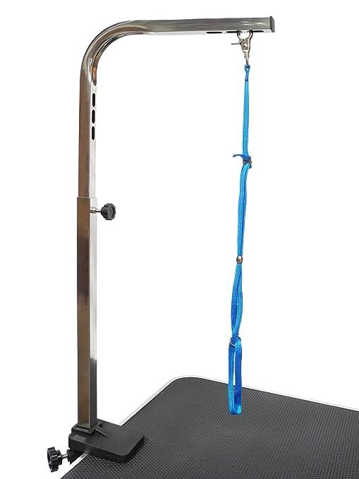 GO Club Mascotas Perro hidráulico Grooming Mesa con Brazo, 91,44 cm: Amazon.es: Productos para mascotas
