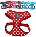No Pull Small Dog - Pet Harness – Breathable Dotty Cotton Design – Range of Colours and Sizes (Red Medium) (LSW Pet Design)