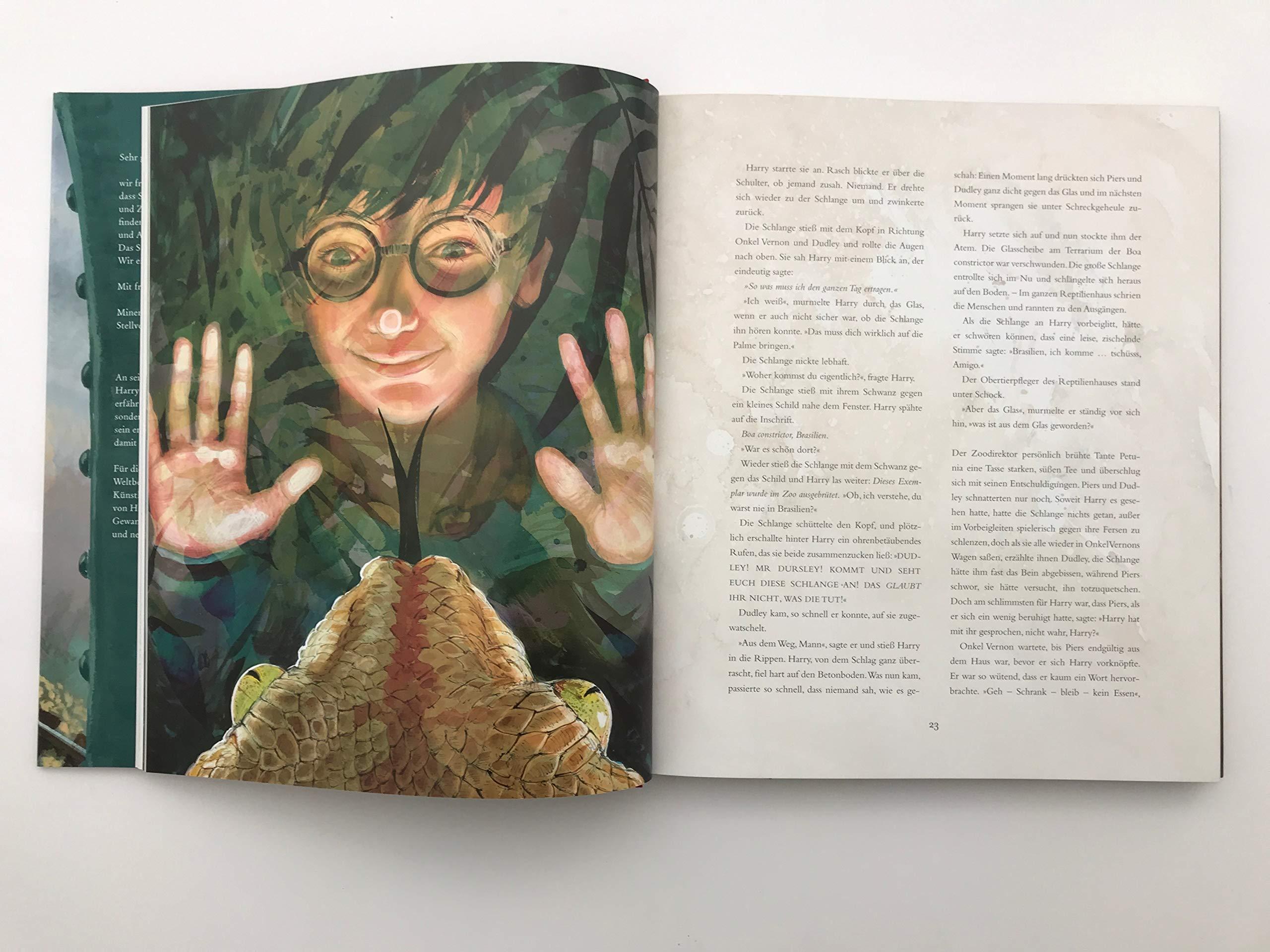 Harry Potter Und Der Stein Der Weisen Farbig Illustrierte