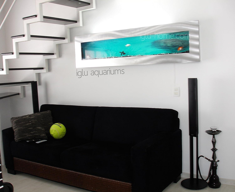 Iglu acuarios panorámicas XL montado en la Pared Tanque de Peces de Cristal - Plata Negro * 1,8 Metros de Largo *: Amazon.es: Productos para mascotas