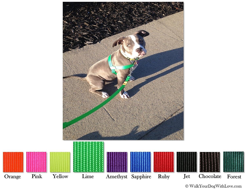 Walk Your Dog With Love Sportso Doggo - Arnés para Perros (4-8 kg ...