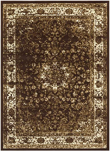 Princess Collection Vintage Oriental Area Rug
