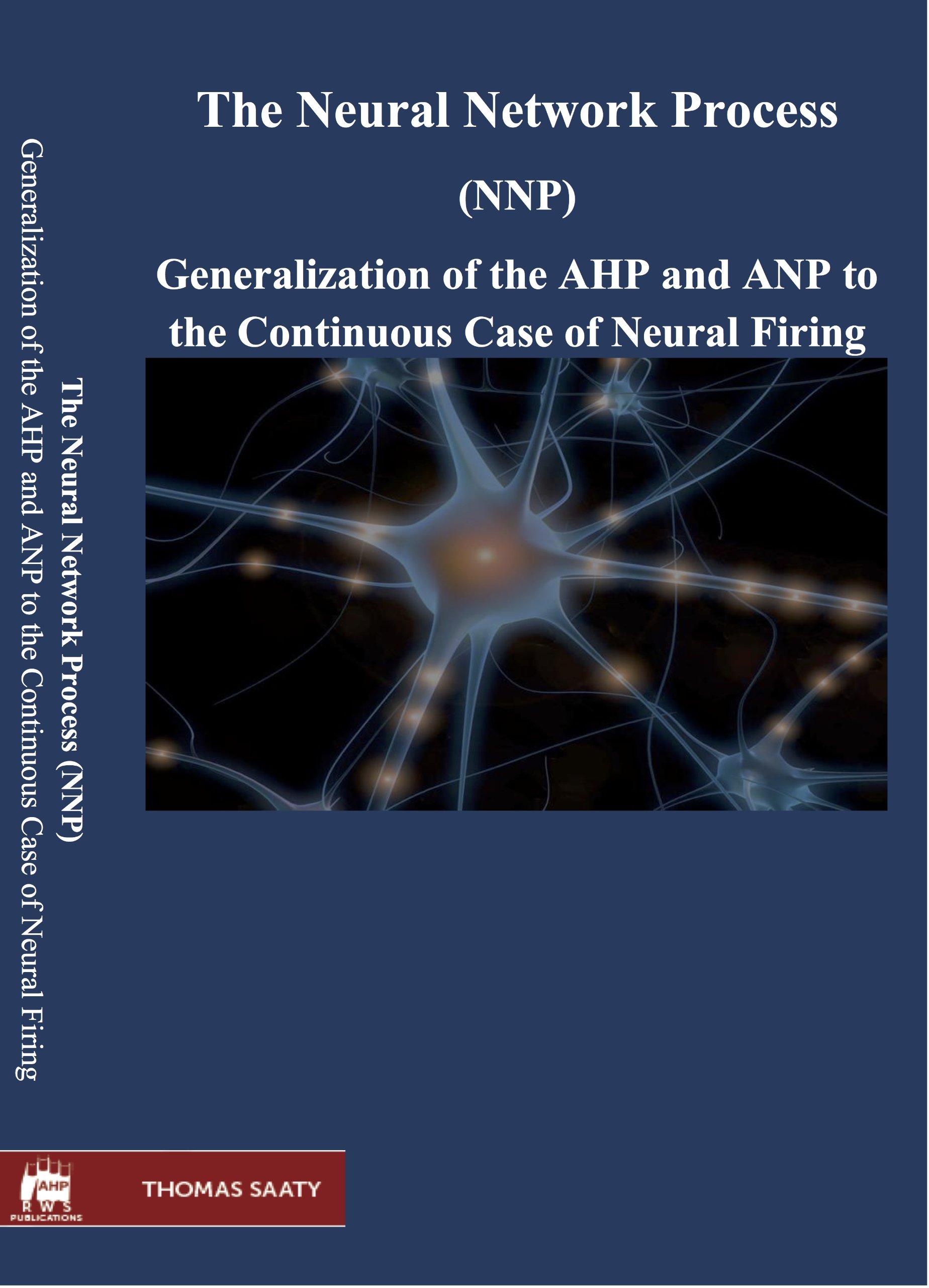 The Neural Network Process PDF