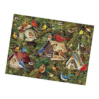 Puzzle 1000 Piece Jigsaw Puzzle for Adults,Children Puzzle Puzzle Toy Landscape Pattern Birdie: Toys & Games
