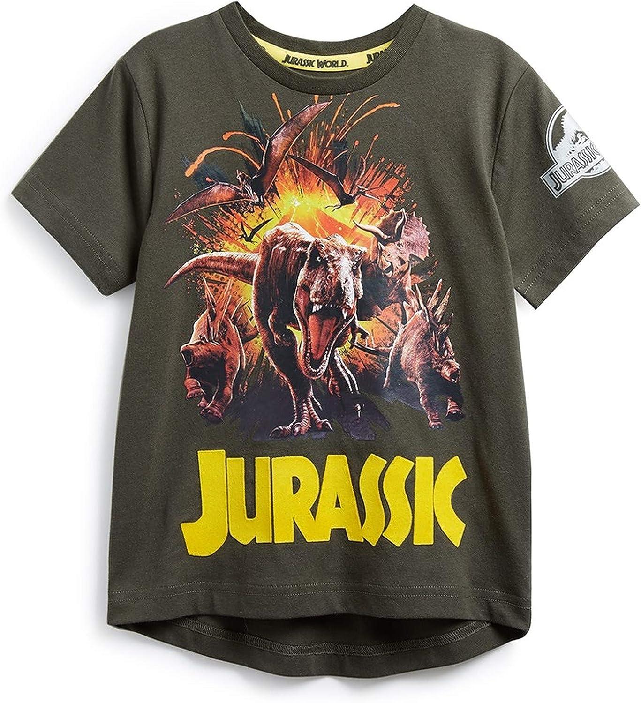 Jurassic World Jurassic Park - Camiseta de manga corta para niño Rojo naranja caqui. 5-6 Años: Amazon.es: Ropa y accesorios