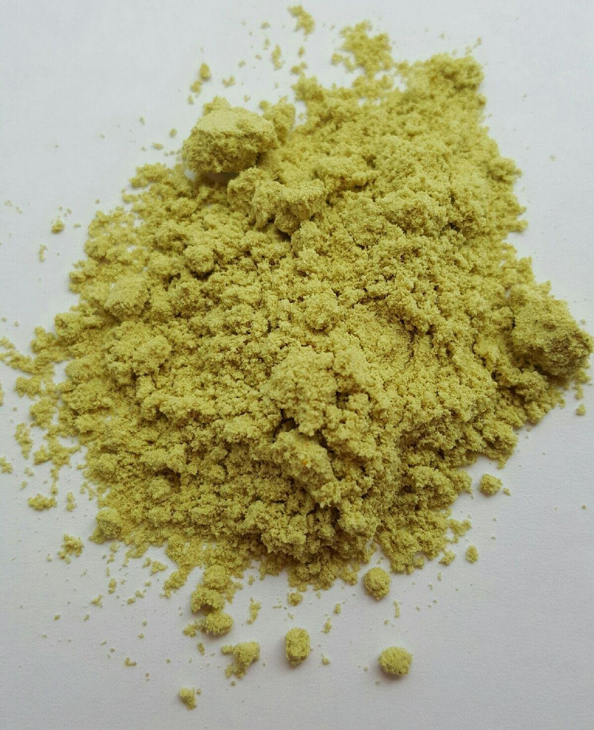 Pumpkin Seed Protein Powder - Organic- 5 lbs by Seed Oil Company (Image #3)
