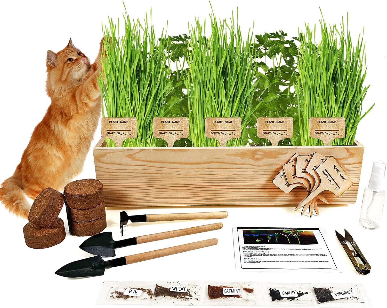 Hand-Mart Cat Grass Grow Planter Kit Indoor - 5 Flavor Catnip Herbs, Soil, Pots, Garden Tool, Pruner, Sprayer, Labels. Prevent Hairballs and Aid Digestion. DIY Craft for Kids Adults.