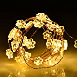 LightsEtc 2 Pack 30 Led String Lights Fairy Lights Battery Operated Waterproof Fairy String Lights Flower Rope light Copper Wire Christmas Lights Christmas Decor Warm White
