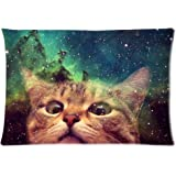 InterestPrint Custom Funny Cat in Galaxy Space Zippered Pillowcase 20 X 30 Inch (Twin Side) , Nebula Universe Star  with Kitten  Pillow Case Cover
