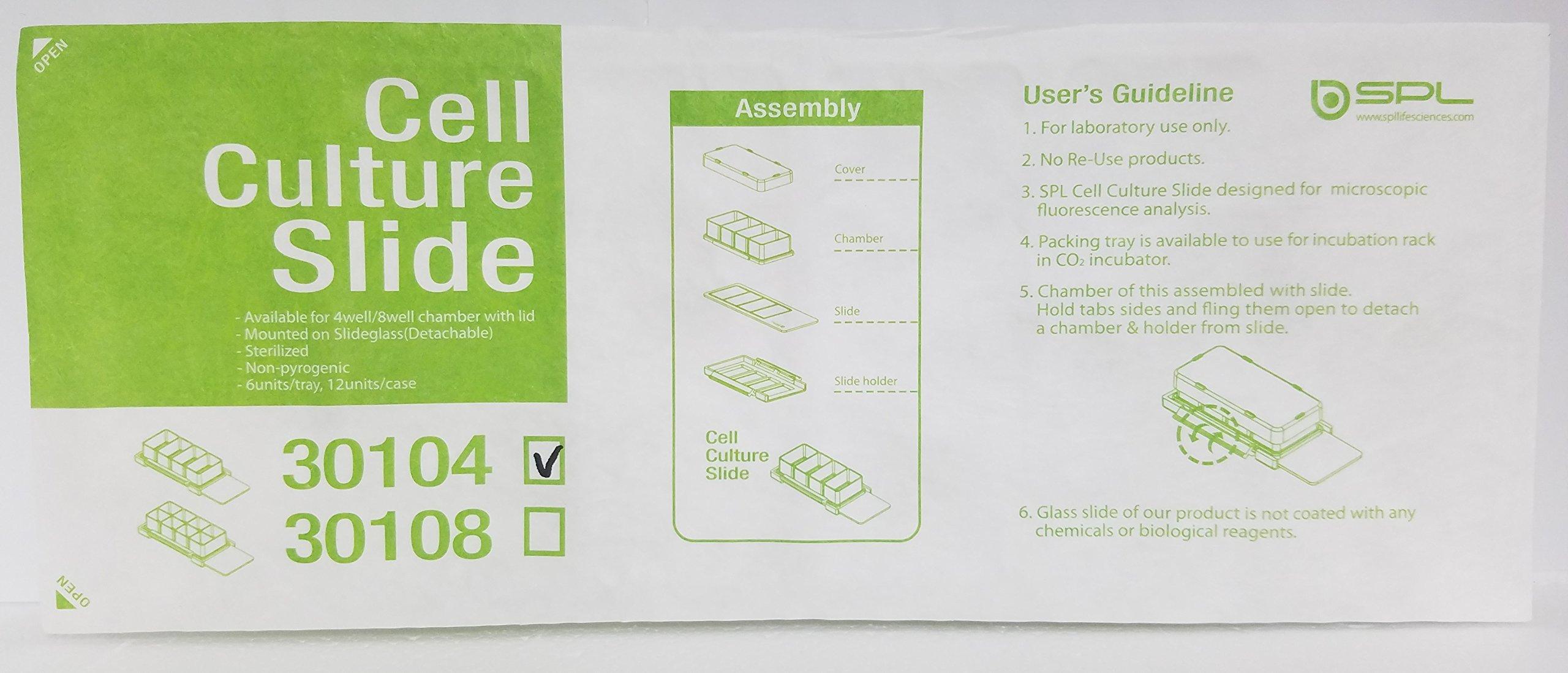 SPL Cell Culture Chamber slide, Clear, 4 wells, PS frame, glass slide, PP holder, 0.5~1.3ml, Sterile, Case of 12 // 2 pack of 6