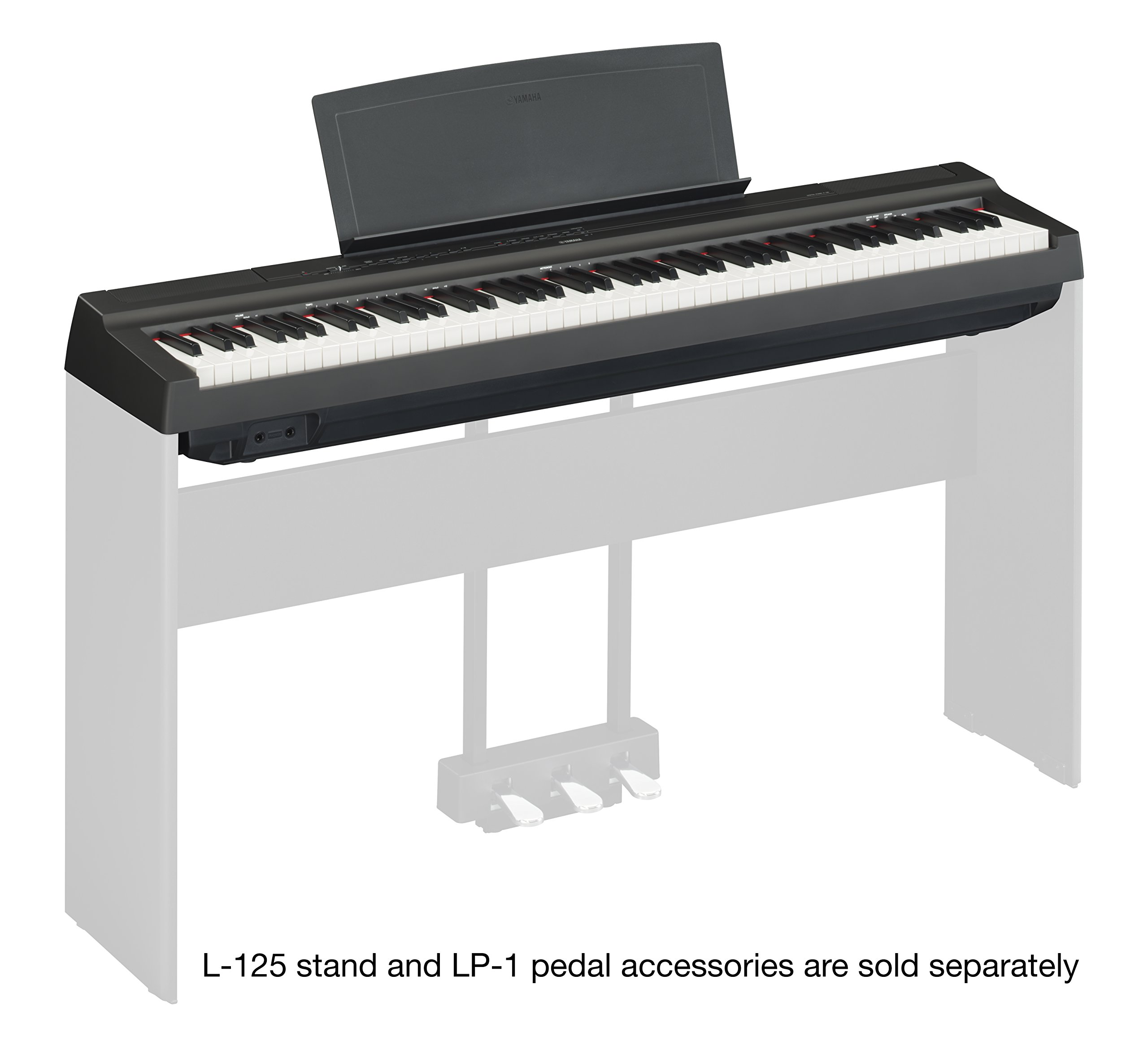 Yamaha P125 88-Key Weighted Action Digital Piano with Power Supply and Sustain Pedal, Black by YAMAHA (Image #3)