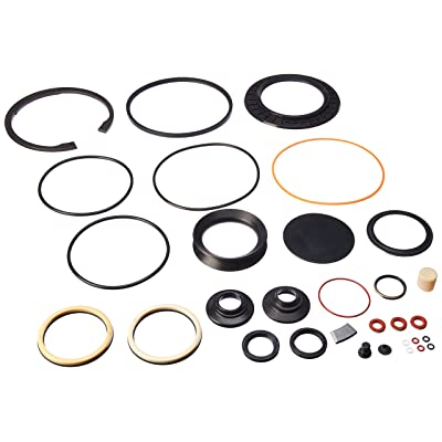 R. H. Sheppard 5545491 Combined Seal Kit with Snap Ring/L-seal (5544861, 5545481, 5544921): Automotive