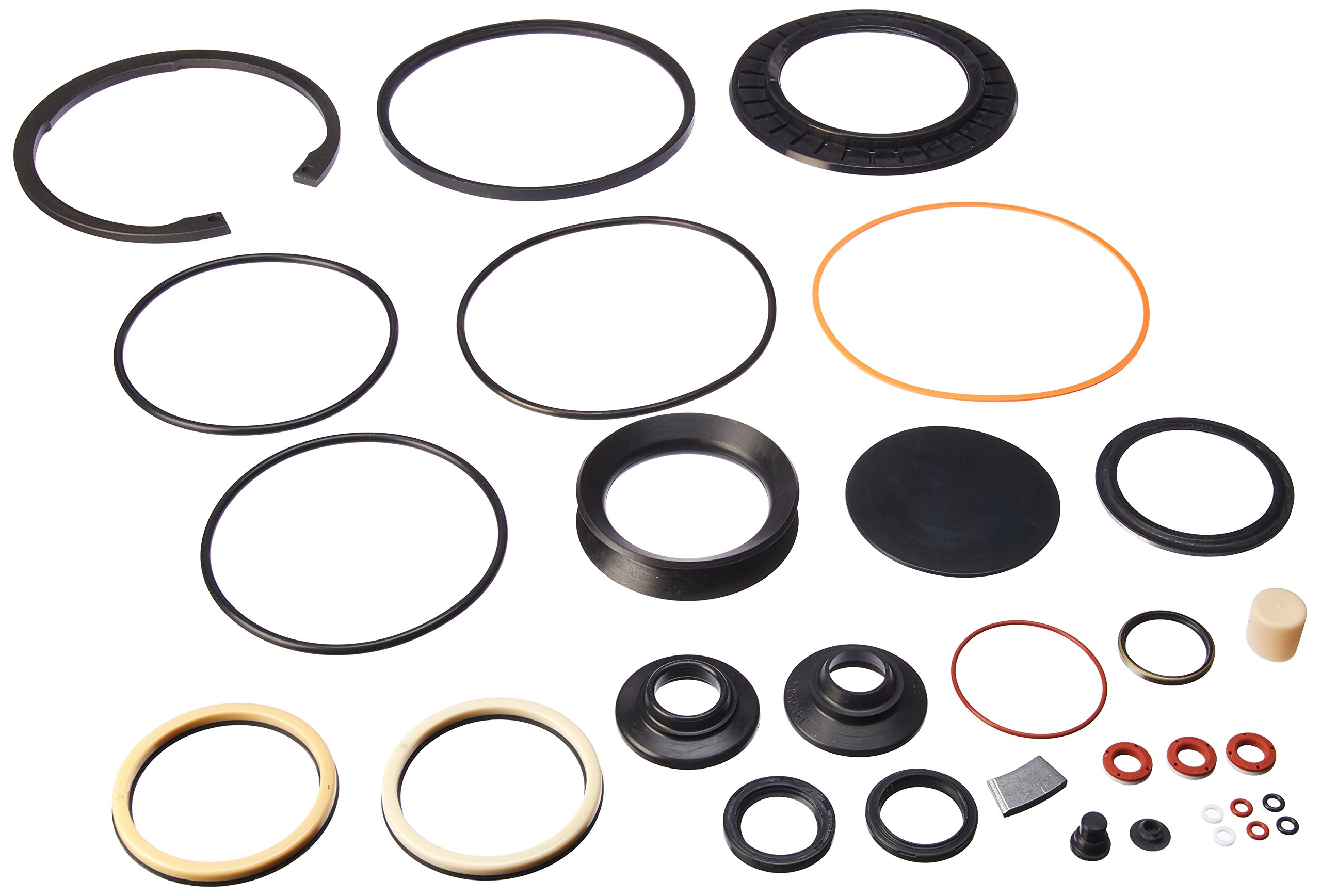 R. H. Sheppard 5545491 Combined Kit with Snap Ring and L-Seal (5544861, 5545481, 5544921) by R. H. Sheppard