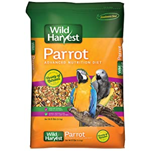 Wild Harvest Advanced Nutrition Parrot 8 Pound Bag – Best parrot food for skin and feathers