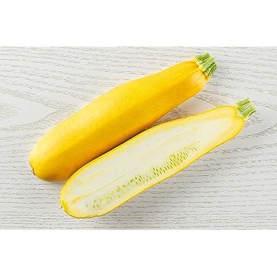 Summer Squash, Early Prolific Straight Squash Seeds : Summer Squash Plants : Garden & Outdoor