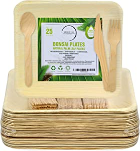 Compostable Palm Leaf Plates and Utensils Set (100 Total Pieces) 25 Square 10 x 10 Inch Biodegradable Palm Plates, 25 Forks, 25 Spoons, 25 Knives - Eco-Friendly Plates and Sustainable Dinnerware
