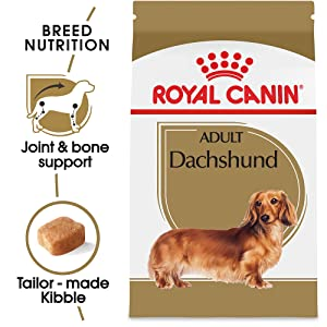 Royal Canin Dachshund Adult Breed Specific Dry Food