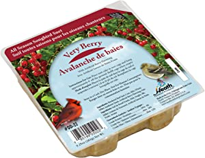 Suet Songbird Very Berry Cake, 16 Pack