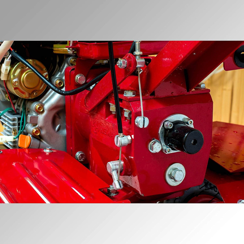 Weima wm1100be de 6 Diff 9.5 PS 418 CCM fresado Ancho 135 cm ...
