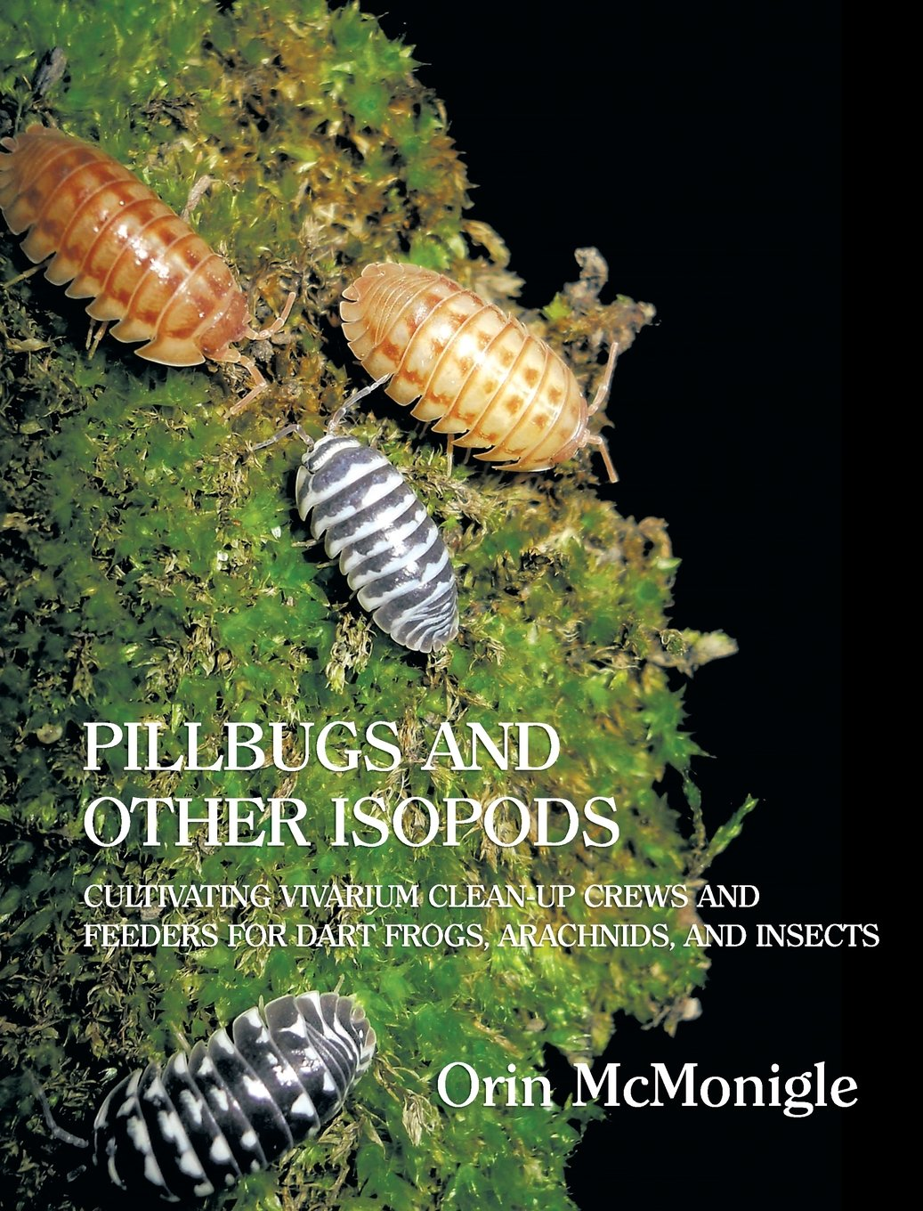Pillbugs Other Isopods Cultivating Arachnids product image