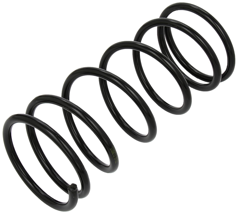 lesjofers 4262013 Coil Spring Rear