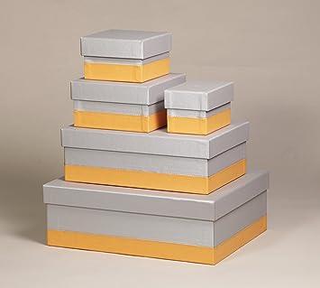 5 St/ück aus italienischem Kunstleder, elegant und praktisch, ideal f/ür Ihre Organisation Rhodia 318881C Set mit 5 Boxen silber