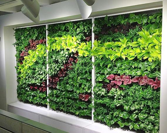 Ducomi Jardín Vertical - 56 bolsillos - Macetas de pared para decoración - Porta Plantas diseño modular de colgar a pared - esterno Ed Interno - Columna ...