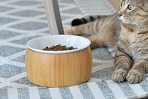 TigerLi Raised Cat Bowl 6