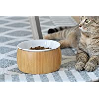 Amazon Best Sellers: Best Raised Cat Bowls