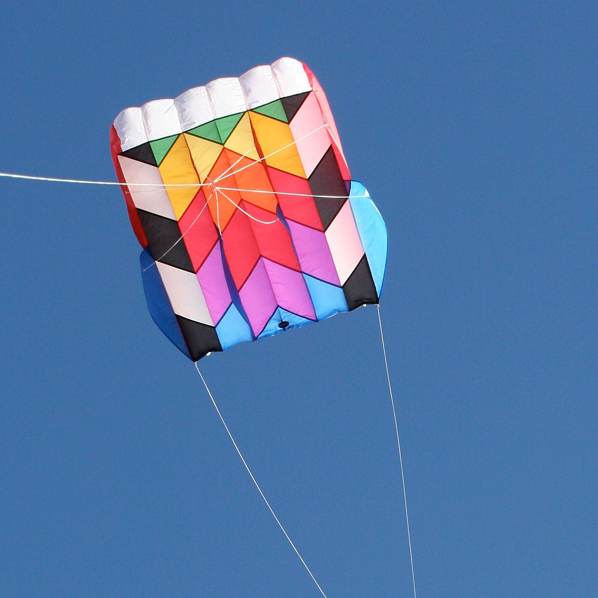 Into The Wind Parafoil 10 Kite