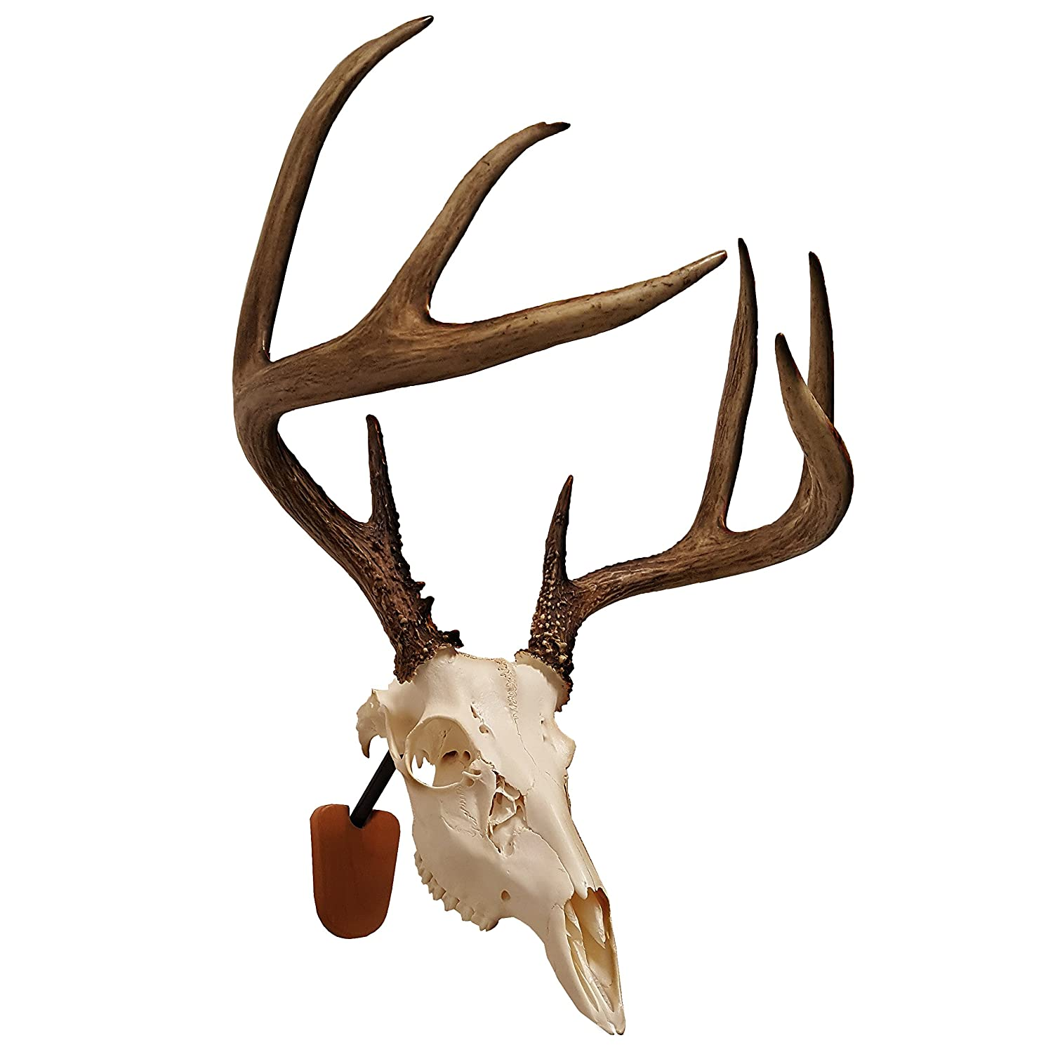 Walnut Hollow Country Euro Skull Mounting Kit 41852