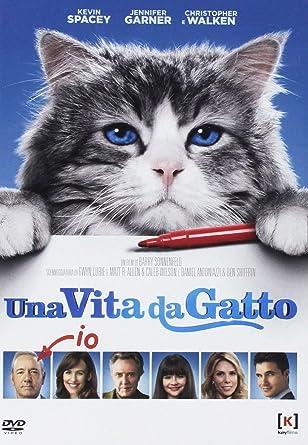 Una Vita Da Gatto Nine Lives Dvd Italian Import Amazoncouk