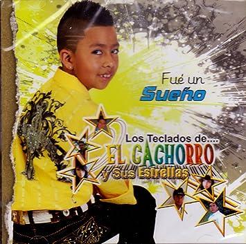 Los Teclados De El Cachorro Y Sus Estrellas, Miguel Angel Gatika - El Cachorro Y Sus Estrellas (Fue Un Sueno) - Amazon.com Music