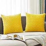 HOLLHOFF Yellow Velvet Throw Pillow Cover Decorative Striped Velvet Soft Throw Pillow Case for Couch Living Room Sofa Farmhou