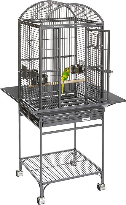 Amazon Com Midwest Homes For Pets Nina Bird Cage Platinum Dome Top Birdcages Pet Supplies