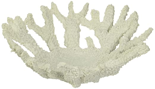 Small Shallow White Faux Coral Bowl from the Abbott Collection