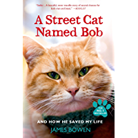 A Street Cat Named Bob: And How He Saved My Life (English Edition)